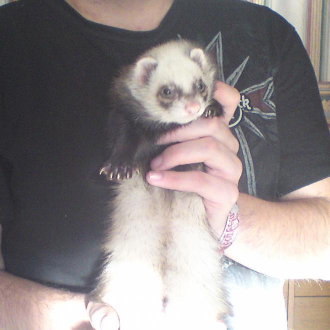 suzy 19.11.2011